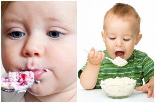 Творог: польза и вред, пищевая ценность, калорийность, химический состав