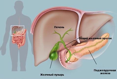 Питание, диета после удаления желчного пузыря после операции, в первый, второй месяц, меню