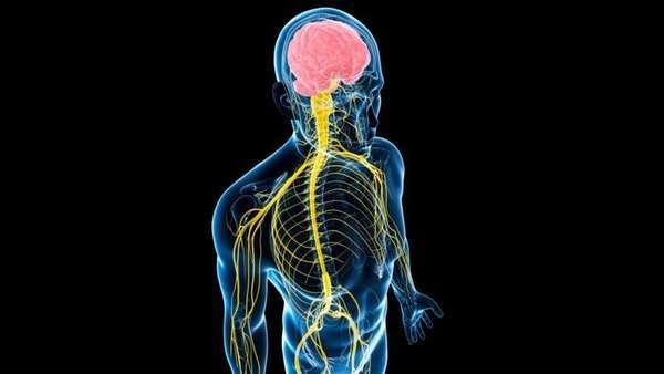 Эпендимома головного и спинного мозга у детей: симптомы и лечение