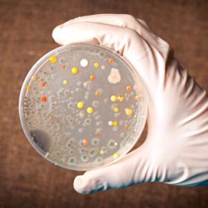 Как отличить ротавирус: тест, какие анализы сдавать, сколько ждать результатов