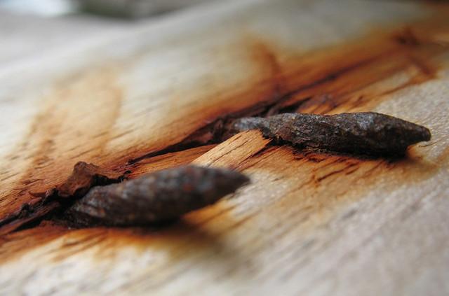 Поранился ржавым гвоздем: что делать, опасность, риск столбняка и инфицирования раны