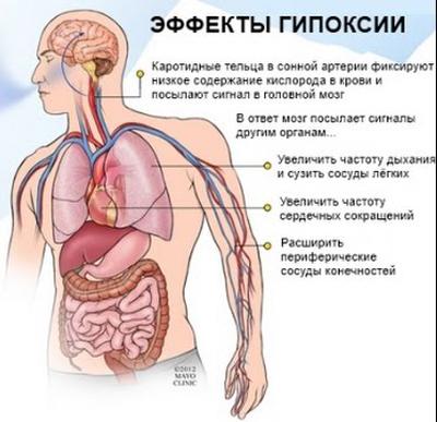 Горная болезнь, высотная гипоксия: причины, симптомы, диагностика, лечение, профилактика