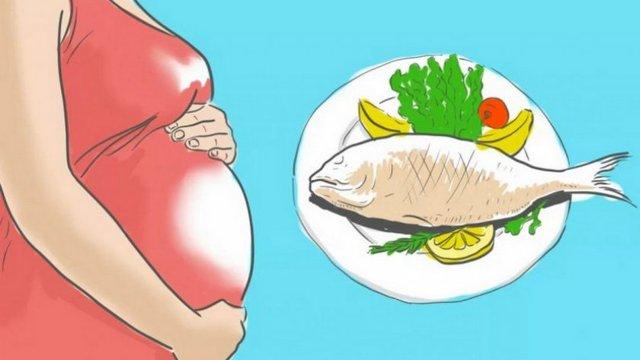Кета: польза и вред, пищевая ценность, состав, противопоказания к употреблению