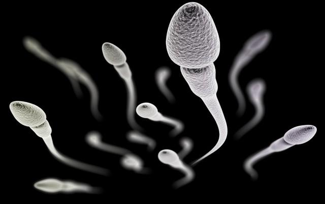 Олигоспермия – причины, лечение, степени, последствия и вероятность зачатия