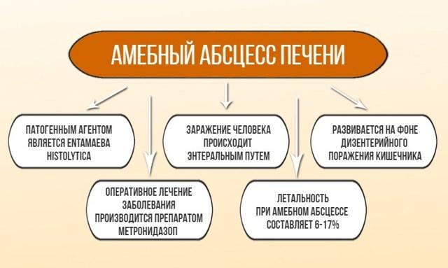 Амебный абсцесс печени: что это такое, причины, симптомы, лечение, профилактика