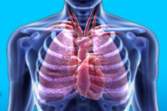 Аневризма грудной аорты: причины, симптомы, диагностика, лечение, классификация