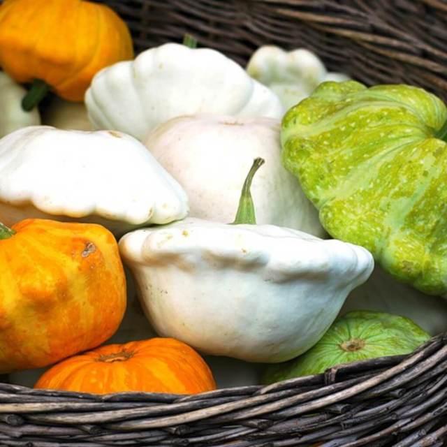 Полезные свойства патиссонов, состав и пищевая ценность, рецепты блюд из патиссонов, особенности приготовления и вред патиссонов