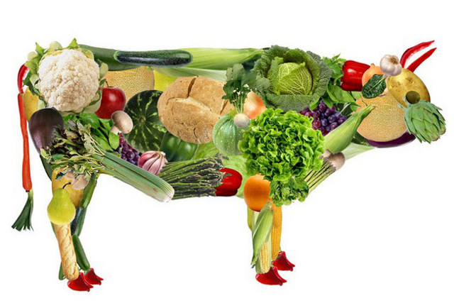 Чем заменить мясо вегетарианцу: продукты заменители мяса