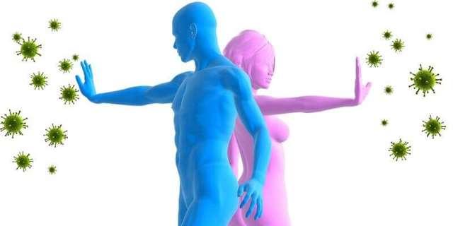 Повышены моноциты в крови: что это значит у взрослого, у мужчин, у женщин