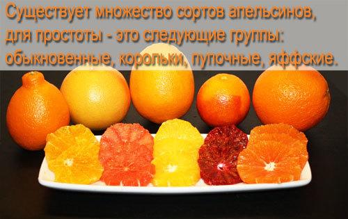 Полезные свойства апельсина, состав, пищевая ценность и калорийность апельсина, вредные свойства и противопоказания.