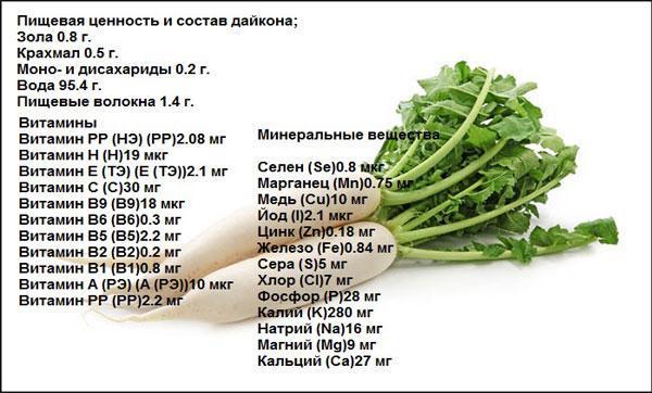 Дайкон: польза и вред, химический состав корнеплода, противопоказания и рецепты народной медицины.